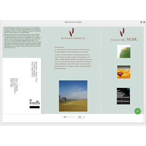 InDesign Pro - Visualisation et Edition